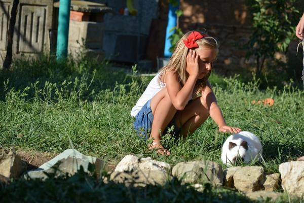 Зайчета в Слънчевата ферма