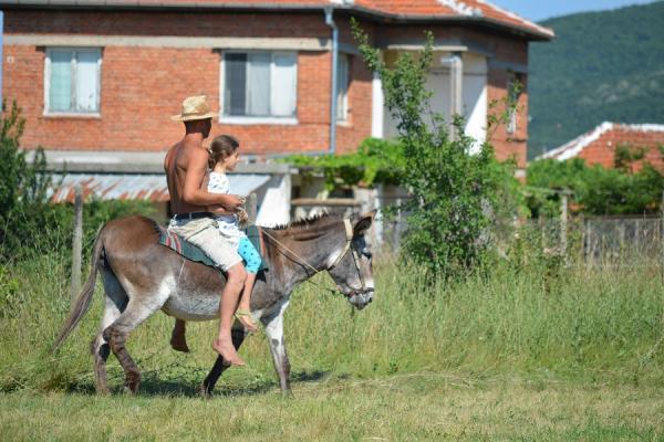 Магарешка езда