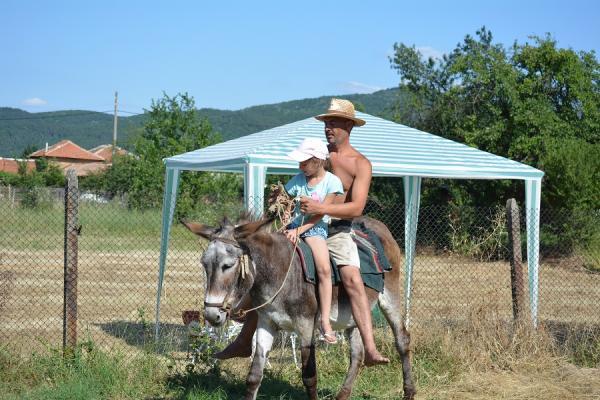 Яздене на магаре